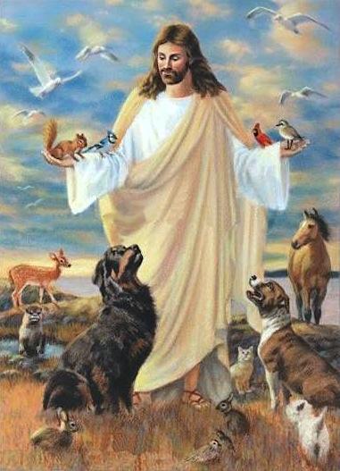 Nos animaux de compagnie vont-ils au ciel ? - Page 15 Jesus-with-animals