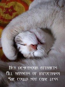 hypocorism