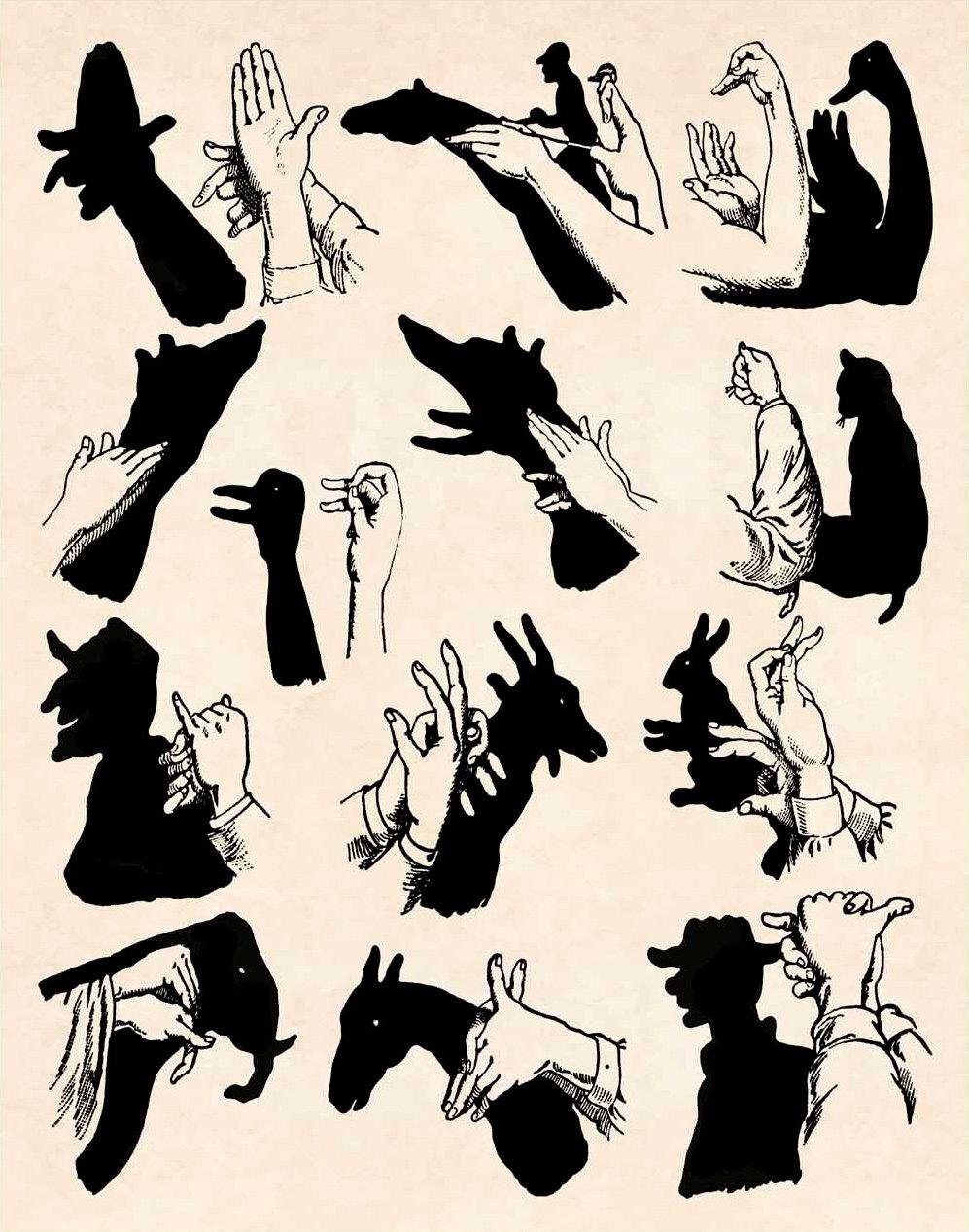 Шоу теней своими руками
