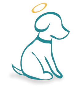 divine dog