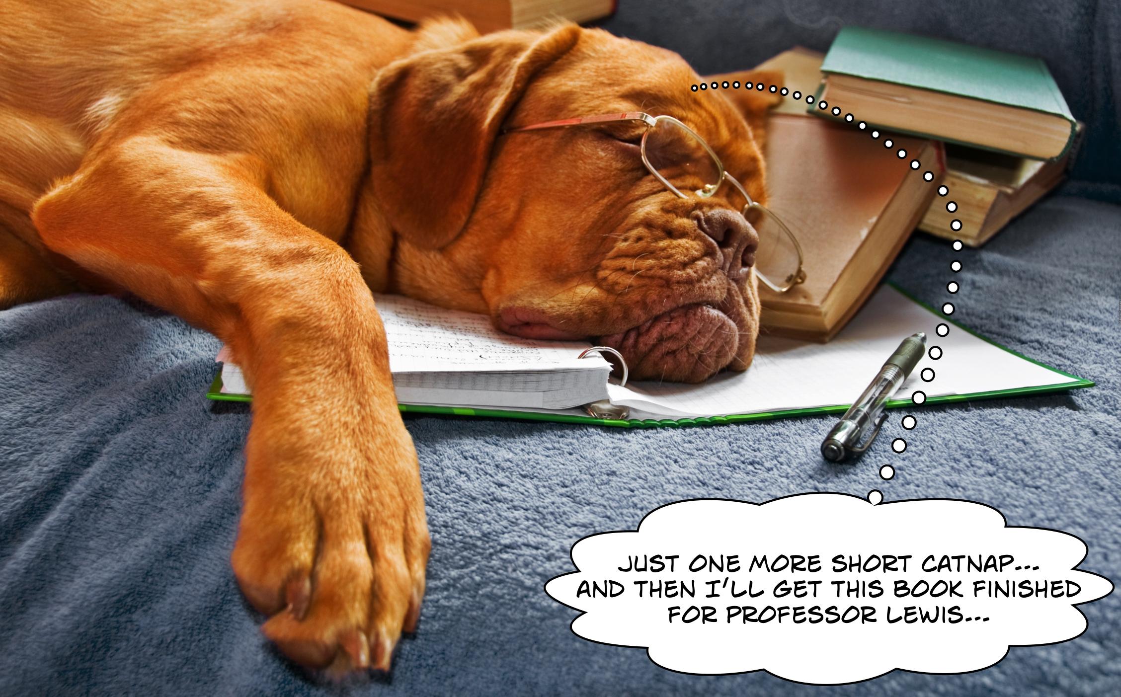 dog author